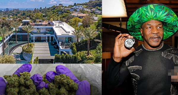 Mike Tyson joins the business to launch a wow-worthy cannabis mansion